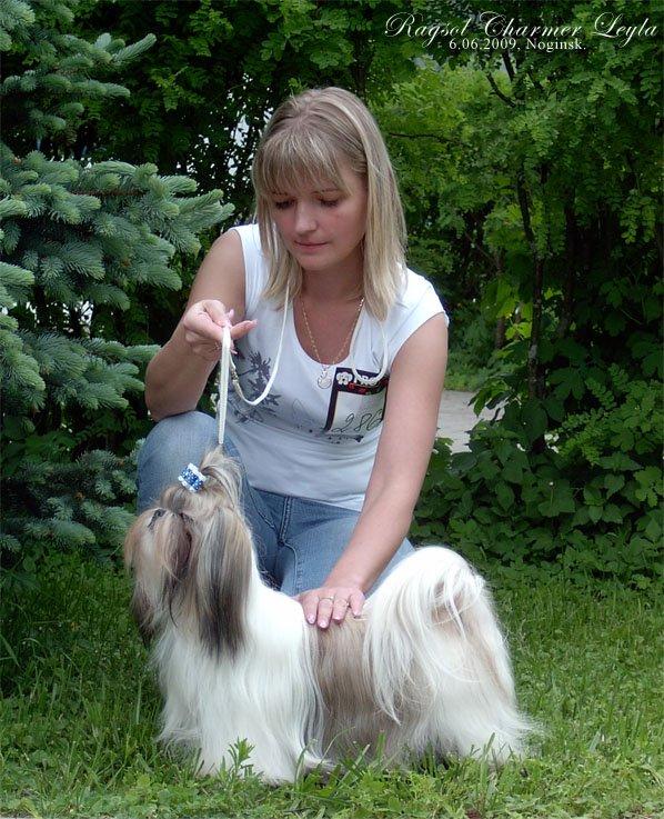 Noginsk Russia  City new picture : Owner: Sapozhnikova Natalia Elektrostal ', Russia .